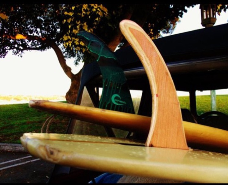 Cassowary Surfboard Fin