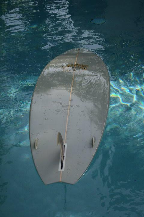 Brewer Single Fin with side bites