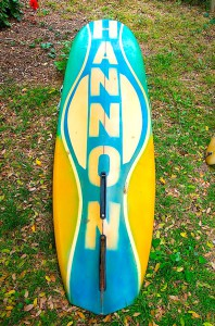 Hannon Surfboards Back